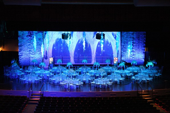 Frozen artistic science for 25th wedding anniversary stage decoration