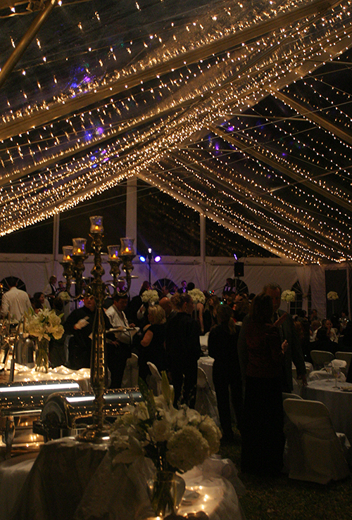 Edison_Home_Wedding_Clear_Tent_Twinkle_Lights_Moon_Lighting_Balloon_Close. Edison_Home_Wedding_Clear_Tent_Twinkle_Lights_Interior : winter tent wedding - memphite.com