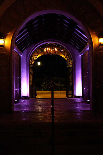 Fiddlers_Creek_Welcome_Back_Dark_Purple_Hallway_LED_lighting_naples